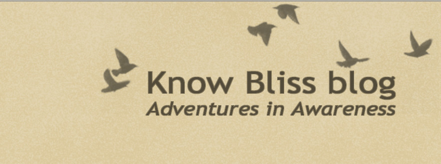 Know Bliss Blog